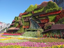 Flower displays on the streets of Beijing