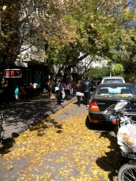 Fall day in Tianjin