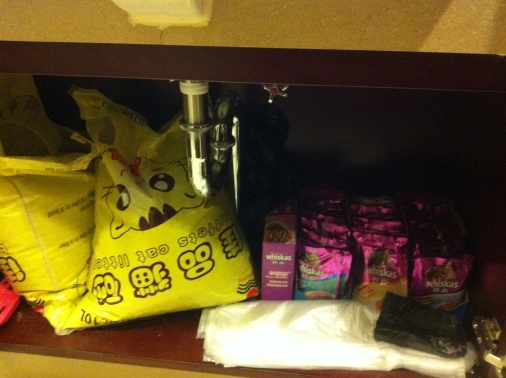 Cupboard is stocked, Ravi will be well fed whilst we are gone