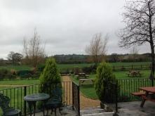 The Natterjack garden