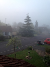 Misty morning on Southgate Drive