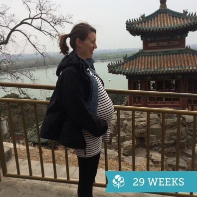 Visiting Summer Palace at 29-weeks