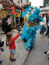 Chinese New Year celebrations at The Galleria